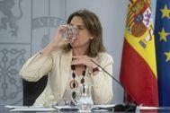 La vicepresidenta de Transición Ecológica, Teresa Ribera, comparece tras el Consejo de Ministros.