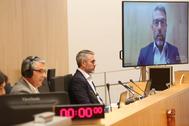 Un momento del pleno semipresencial celebrado en la Diputación de Málaga este miércoles.