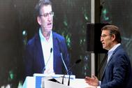 El candidato del PP a revalidar la presidencia de la Xunta de Galicia, Alberto Núñez Feijóo, en un acto.