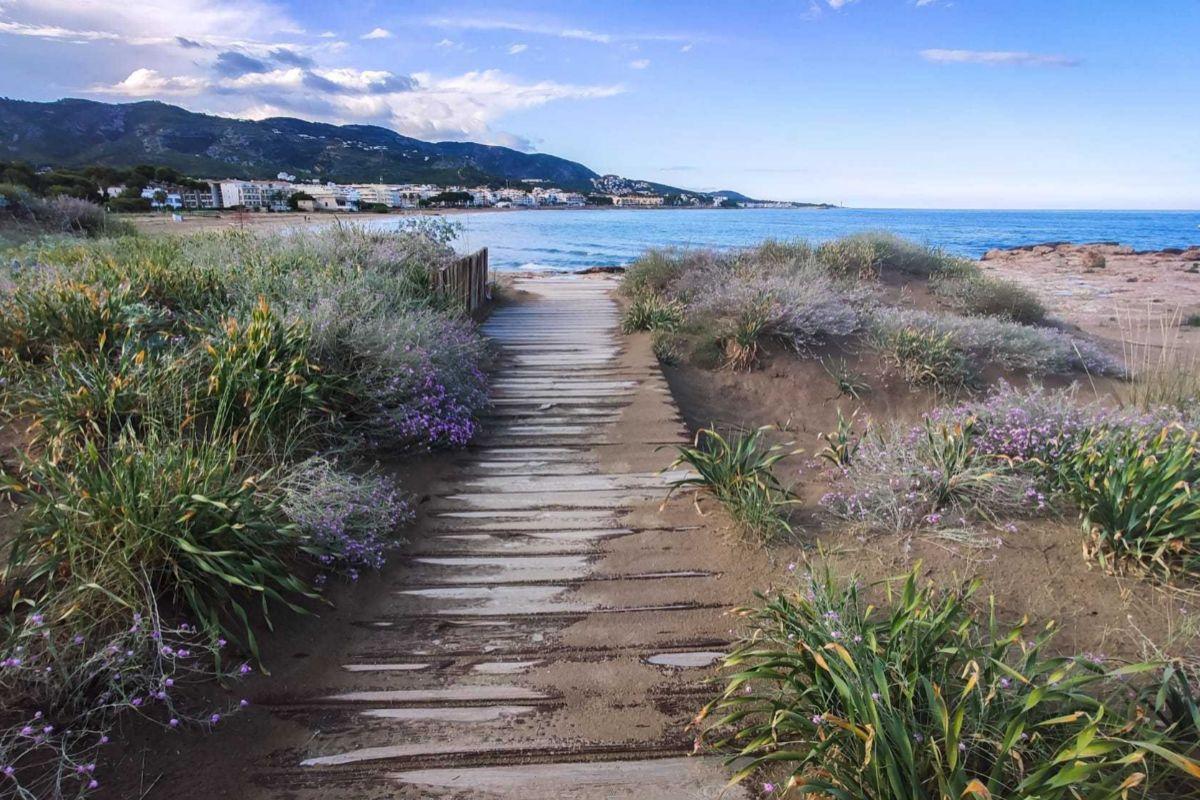 Este acceso a la playa muestra el cuidado por el entorno medioambiental.