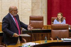 El portavoz de Vox en el Parlamento andaluz, Alejandro Hernández.