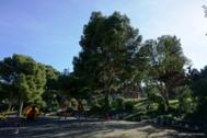 Parque Castillo Palomar (Zaragoza), donde ocurrieron los hechos