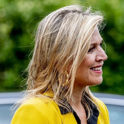 Máxima de Holanda, el amarillo al poder