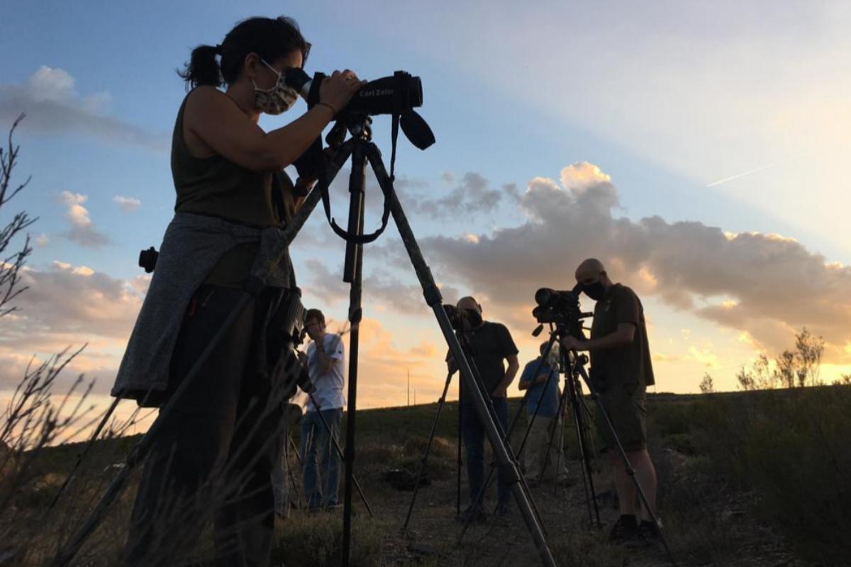 Ecoturistas esperan poder avistar lobos al anochecer en la Sierra de la Culebra (Zamora).