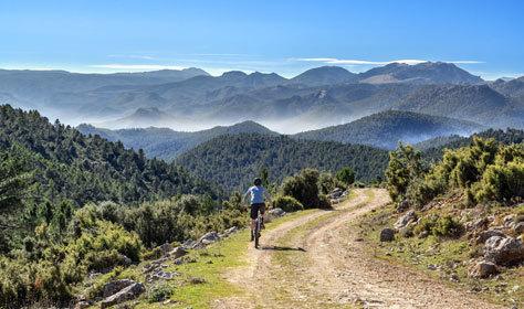 Ruta en bici en el Vale de Alcudia y Sierra Madrona.