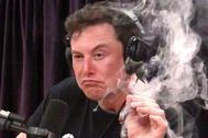 Elon Muks fumando un porro durante una entrevista