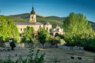 Verano de 2020, ¿el boom del turismo rural gracias o a pesar de los rebrotes?