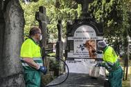 Operarios limpiando la pintura arrojada a la tumba de Buesa el pasado 9 de julio.