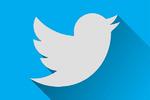 Un vídeo porno interrumpe la audiencia judicial del supuesto hacker de Twitter