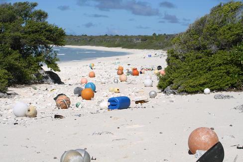 El paraíso tropical que se convirtió en un vertedero asqueroso