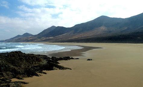 Fuerteventura dispone de playas únicas.