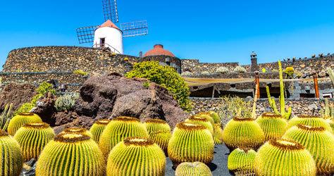 El Jardín de Cactus de Lanzarote.