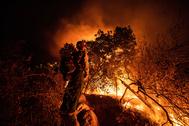 Un bombero durante una quema controlada en un incendio en California.
