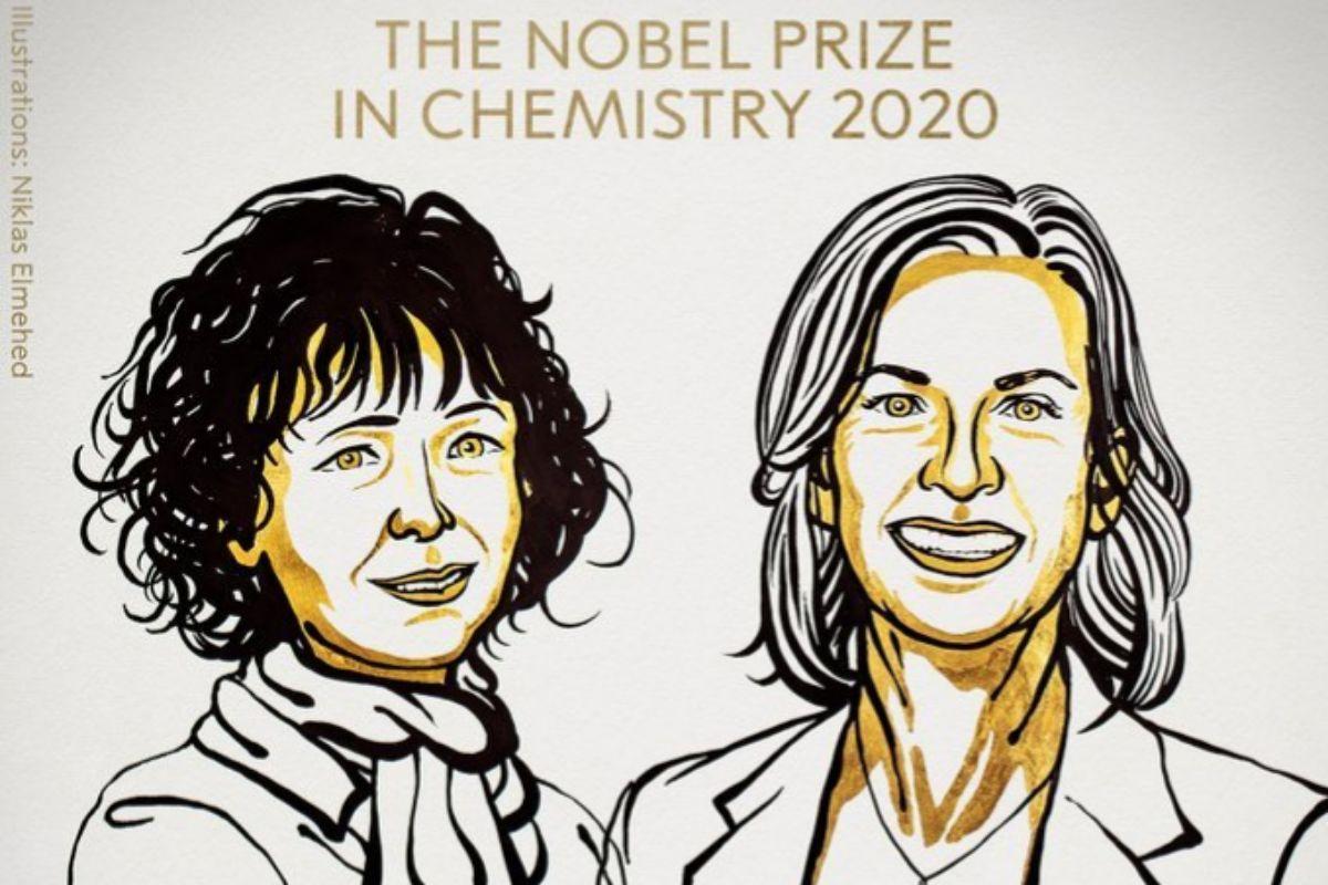 """Nobel de Química para las científicas Charpentier y Doudna por el desarrollo de """"las tijeras CRISPR"""""""