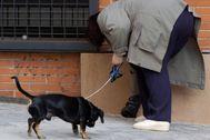 Una mujer recoge los excrementos de su perro.