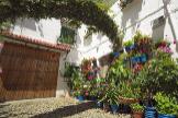 Así celebra la ciudad de Córdoba la fiesta de los patios de mayo... en octubre