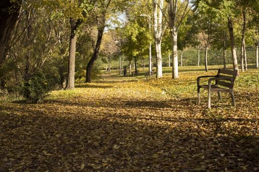 Un rincón del Parque Lineal del Manzanares madrileño.