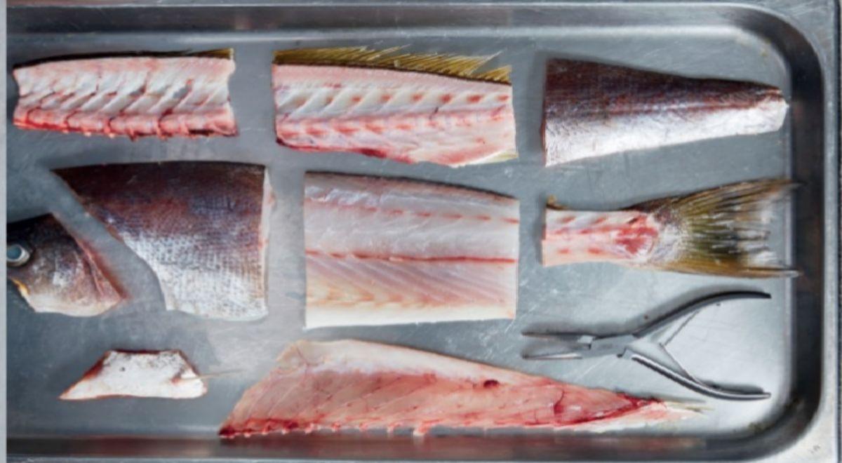 Una pieza de pescado 'diseccionada' por Josh Niland.