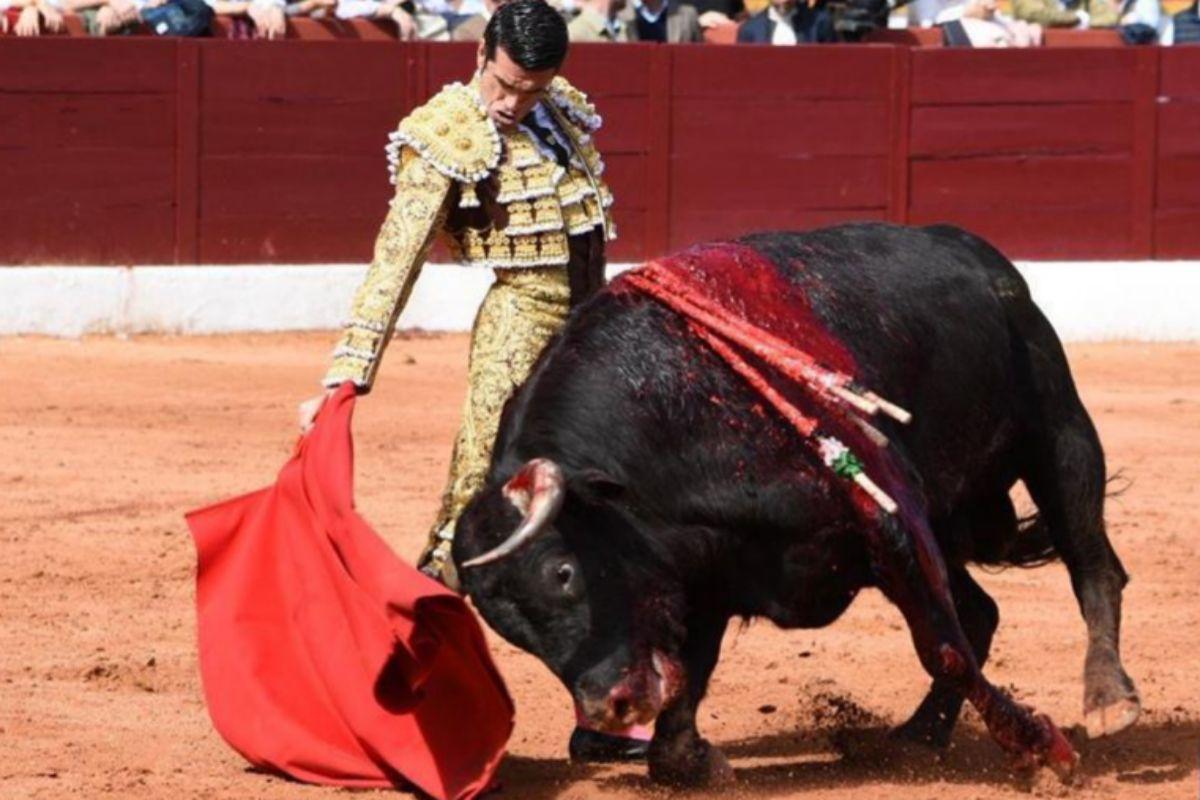 """Emilio de Justo: """"En medio de una pandemia, la gente sigue viniendo a los toros con ilusión"""""""
