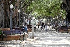 La Plaza de Canalejas, en Alicante, donde se produjo la agresión.