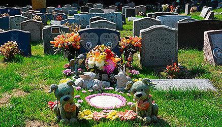 Cementerio para mascotas levantado extramuros.