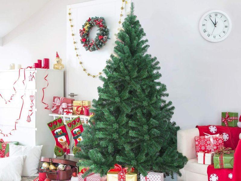 Regalos de Navidad en Amazon con suculentas rebajas. ¡No lo dejes para último momento! 149