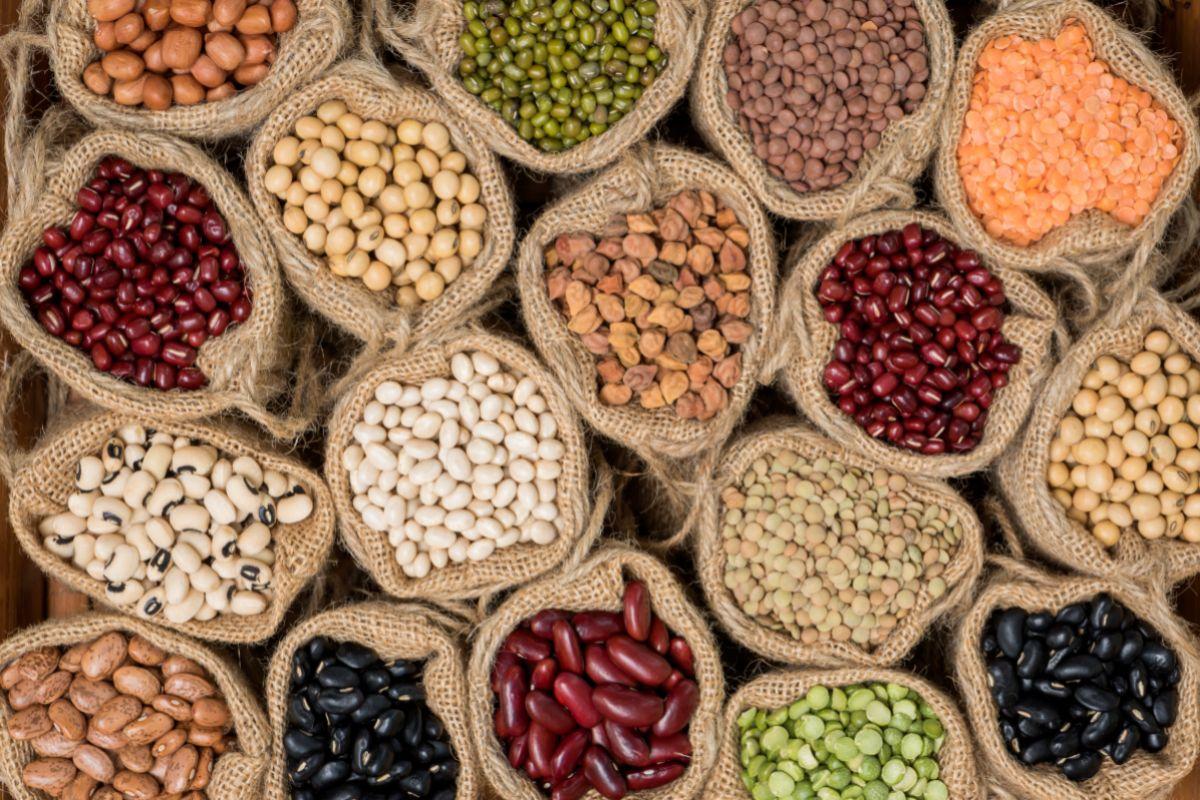 El consumo regular de legumbres ayuda a controlar la hipertensión.