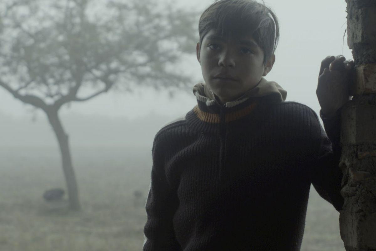 ¿Dónde está mi hijo? es la pregunta que trata de aclarar el drama mexicano 'Sin señas particulares'.