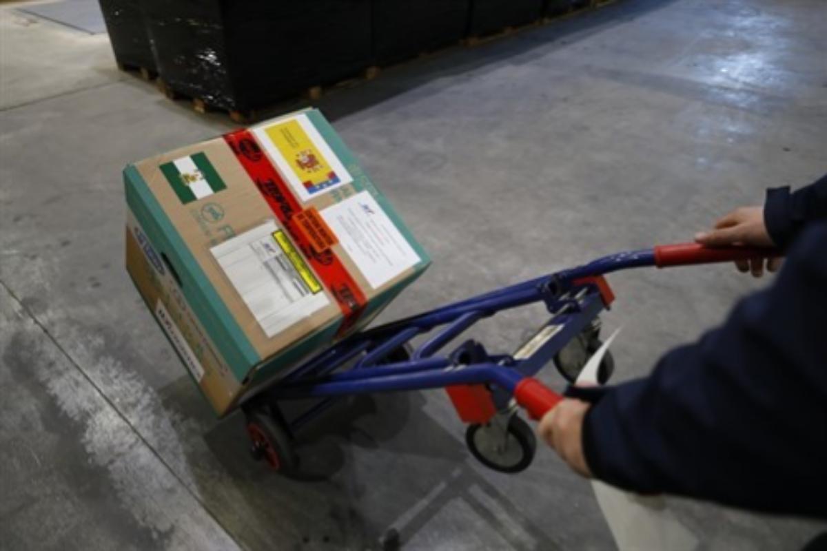 La caja con las vacunas que ha llegado este domingo a Granada.
