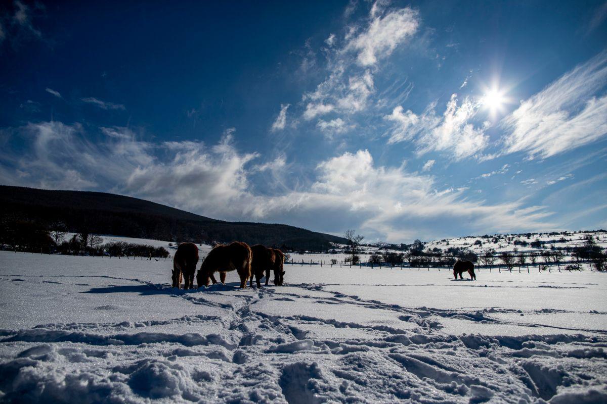 Paisaje de nieve y frio en Celada Marlantes (Cantabria).
