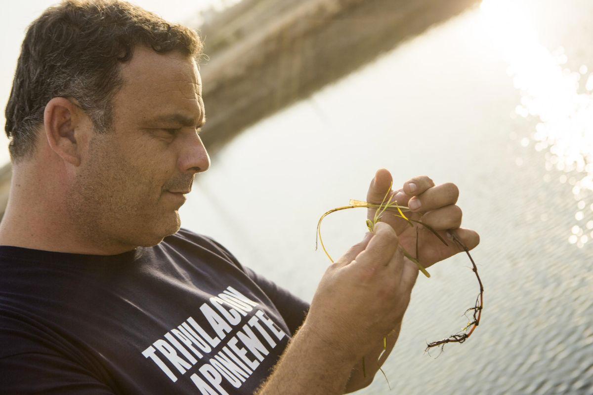 Ángel León con una zostera marina en la mano.