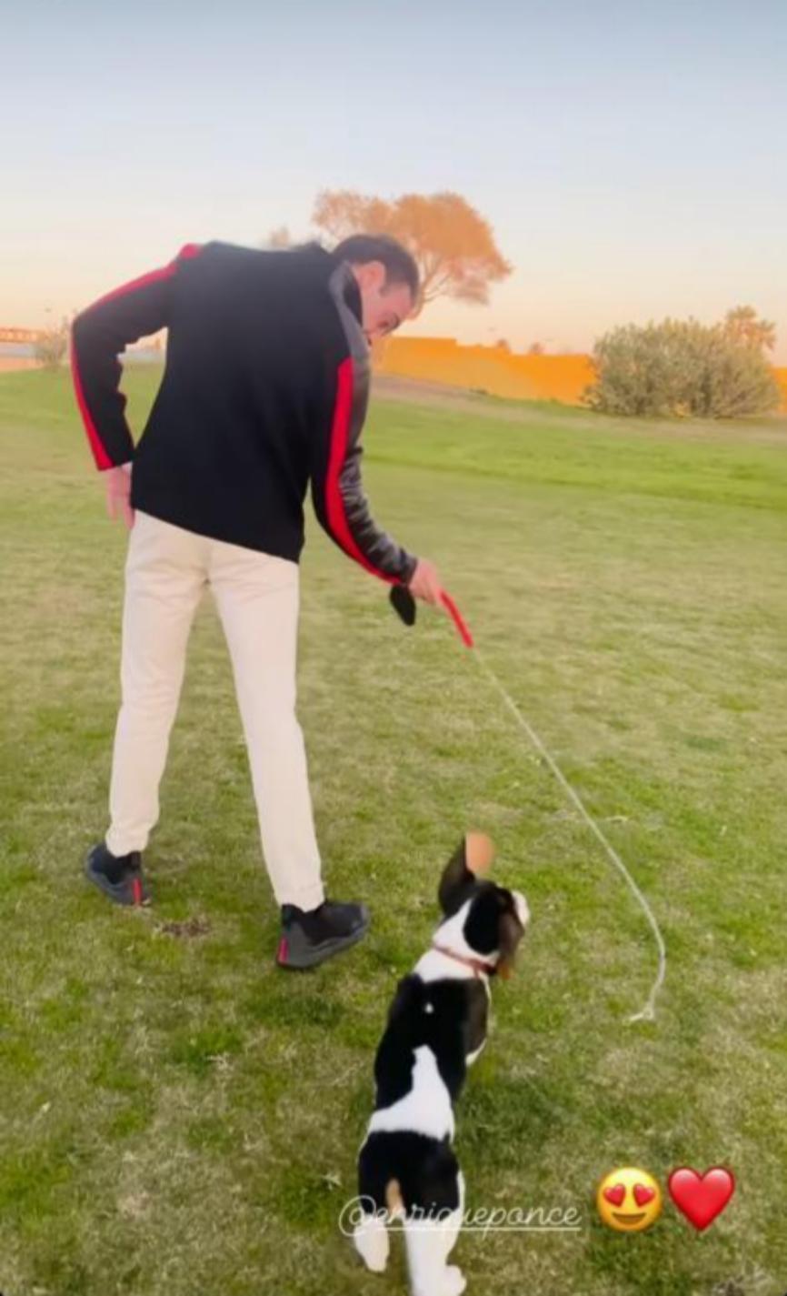 Enrique Ponce torea a Ney, el perrito que comparte con Ana Soria