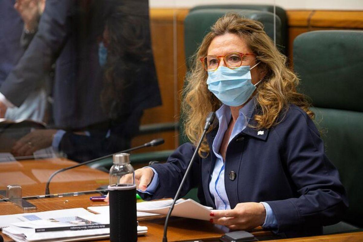 La consejera Gotzone Sagardui durante una comparecencia ante el Parlamento Vasco.