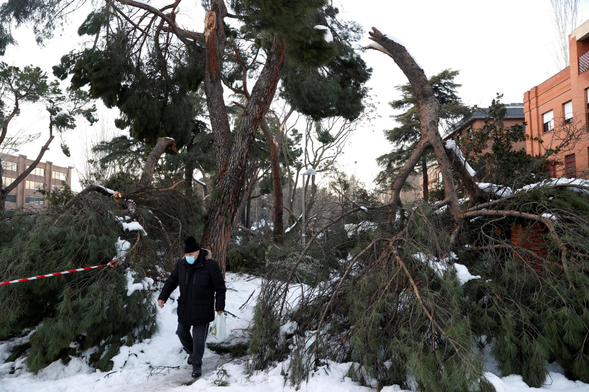 Nieve, hoy: última hora del temporal | Heladas y temperaturas extremas de -20º: la ola de frío se extiende hasta el miércoles