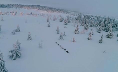 La noruega Marit Beate Kasin en medio de la carrera de trineos tirada por perros más larga.