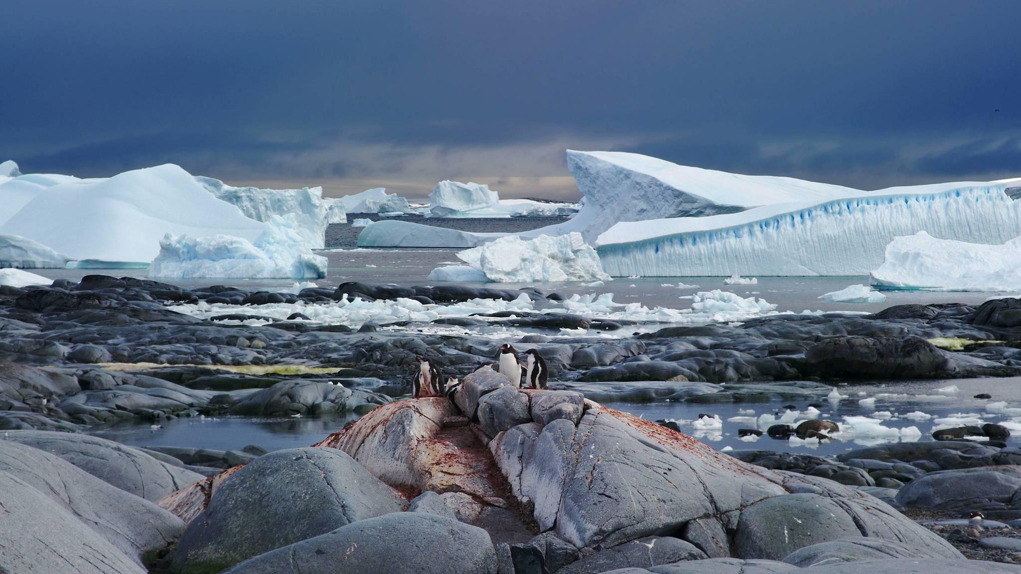 Fotograma del documental 'Antártida: un mensaje de otro planeta'.