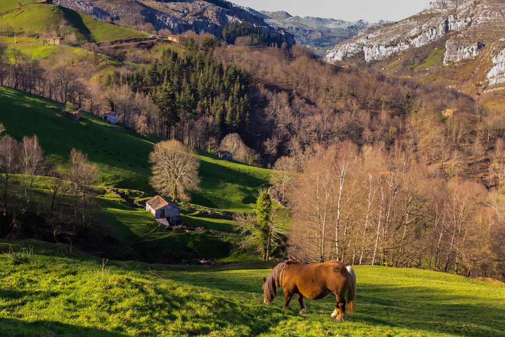 Valles pasiegos en Cantabria, donde se ubica Hijas.