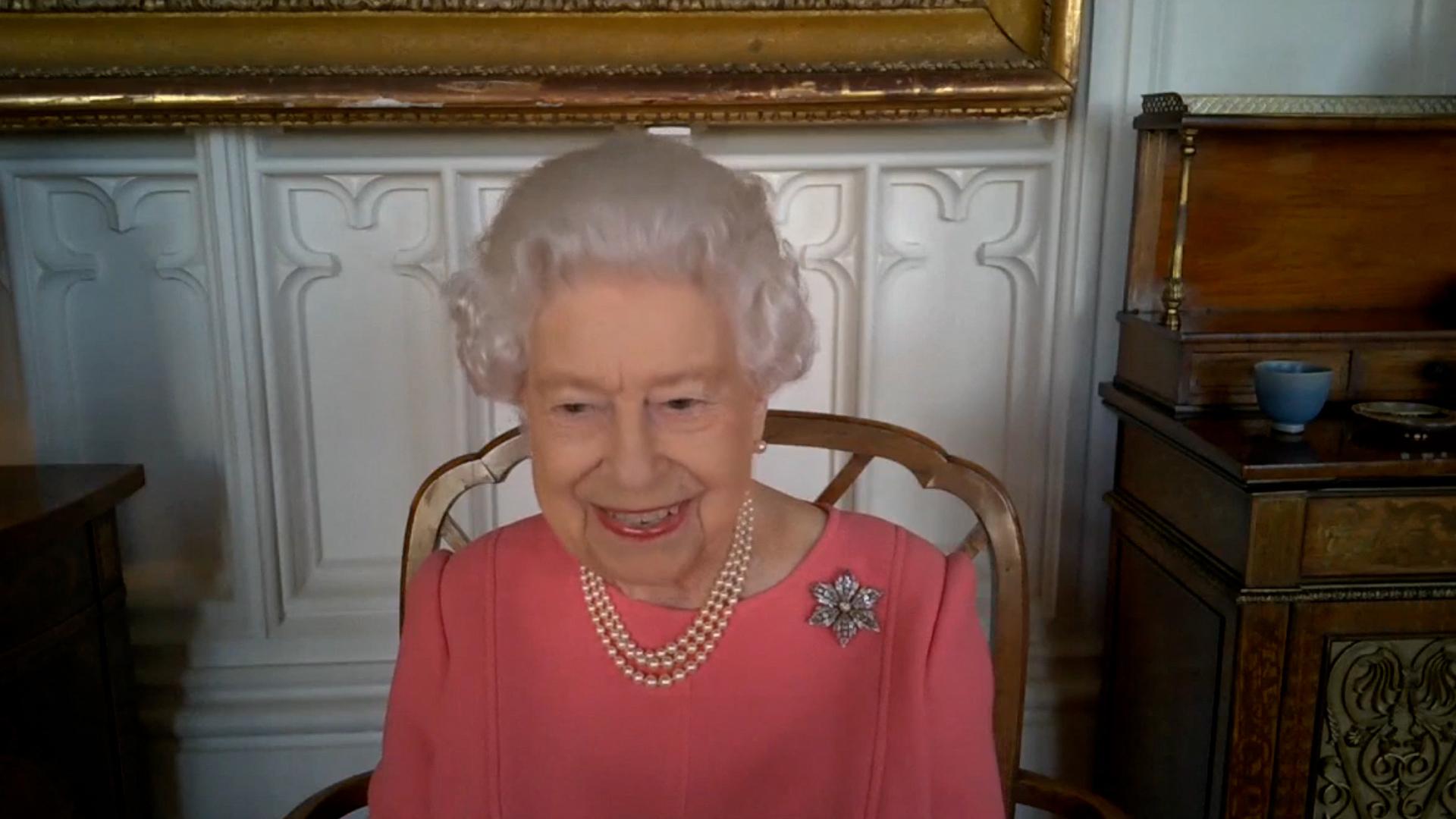 Captura de la videollamada de la Reina con expertos del Covid.