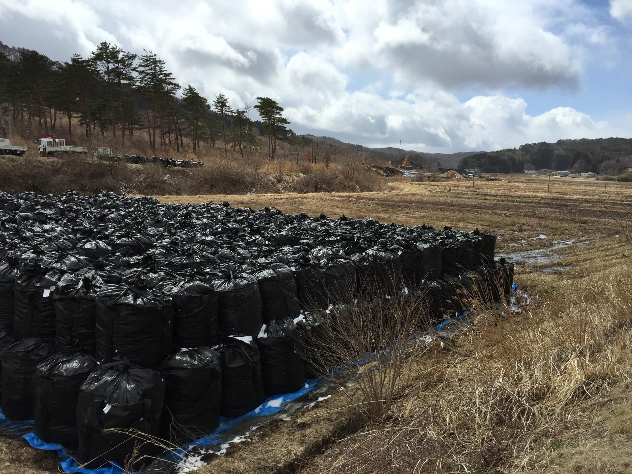 Bolsas de plástico con material radiactivo en el pueblo de Iitate