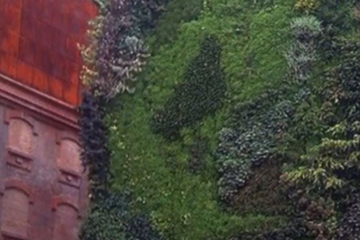 Jardín vertical', de Patrick Blanc (2007)