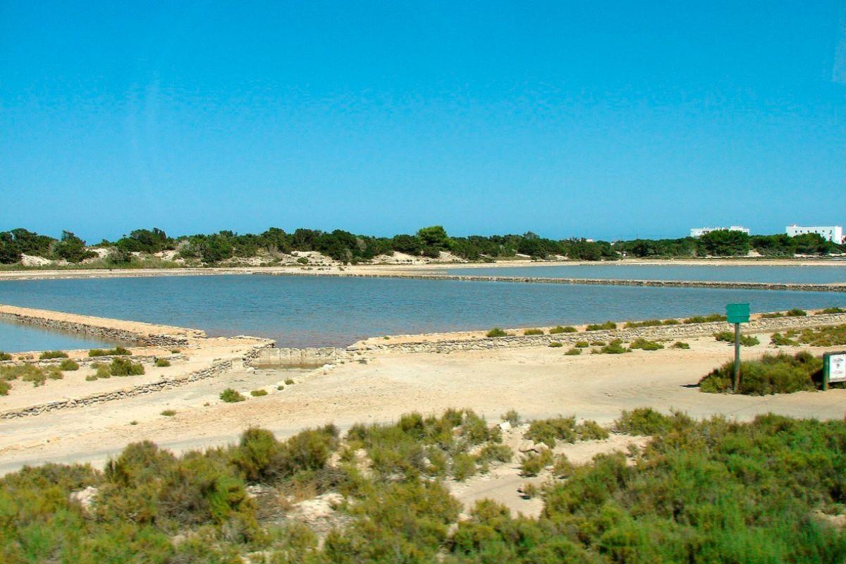 Parque Natural de ses Salines.