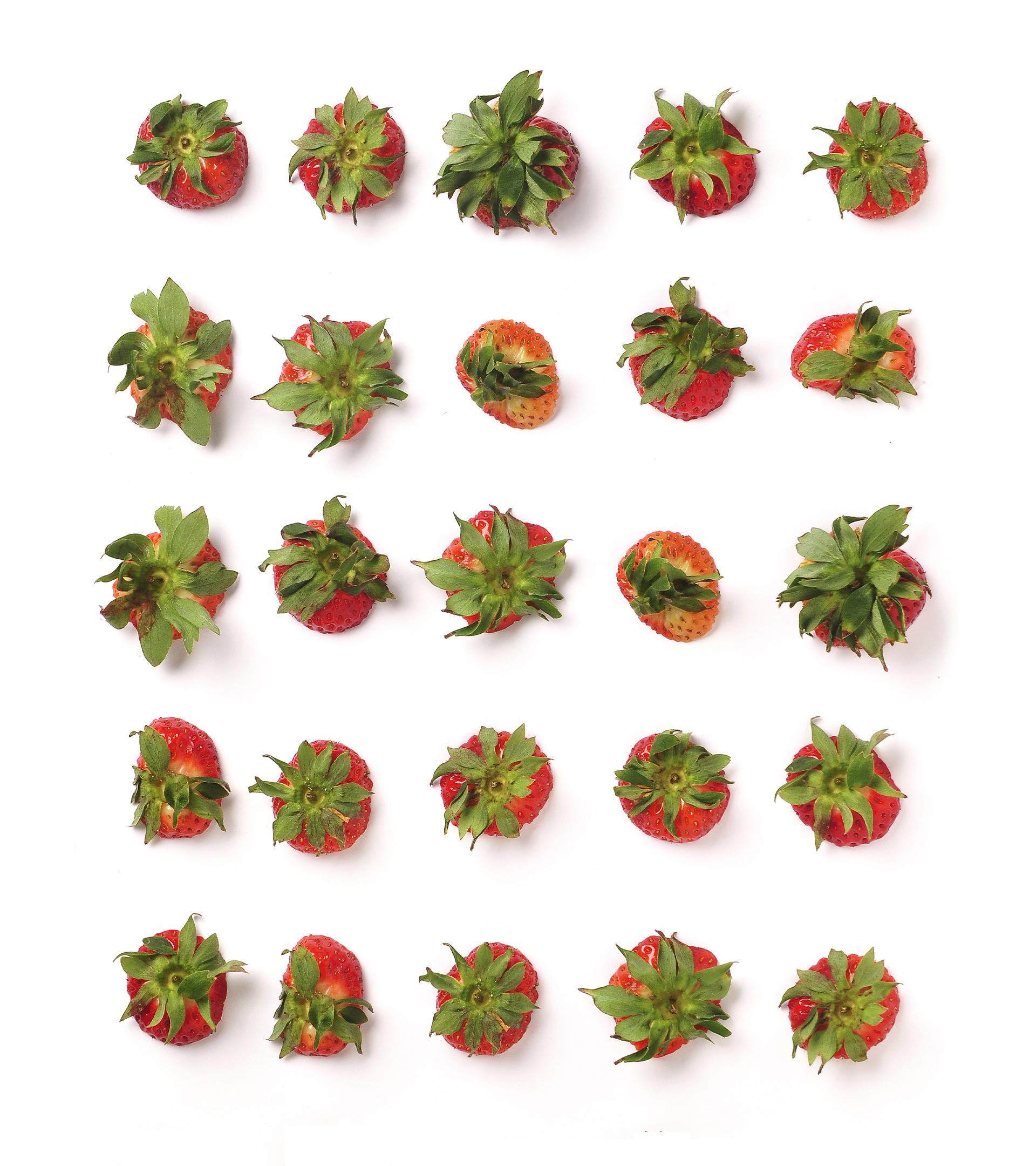 Onubafruit, la revolución de las 'berries'