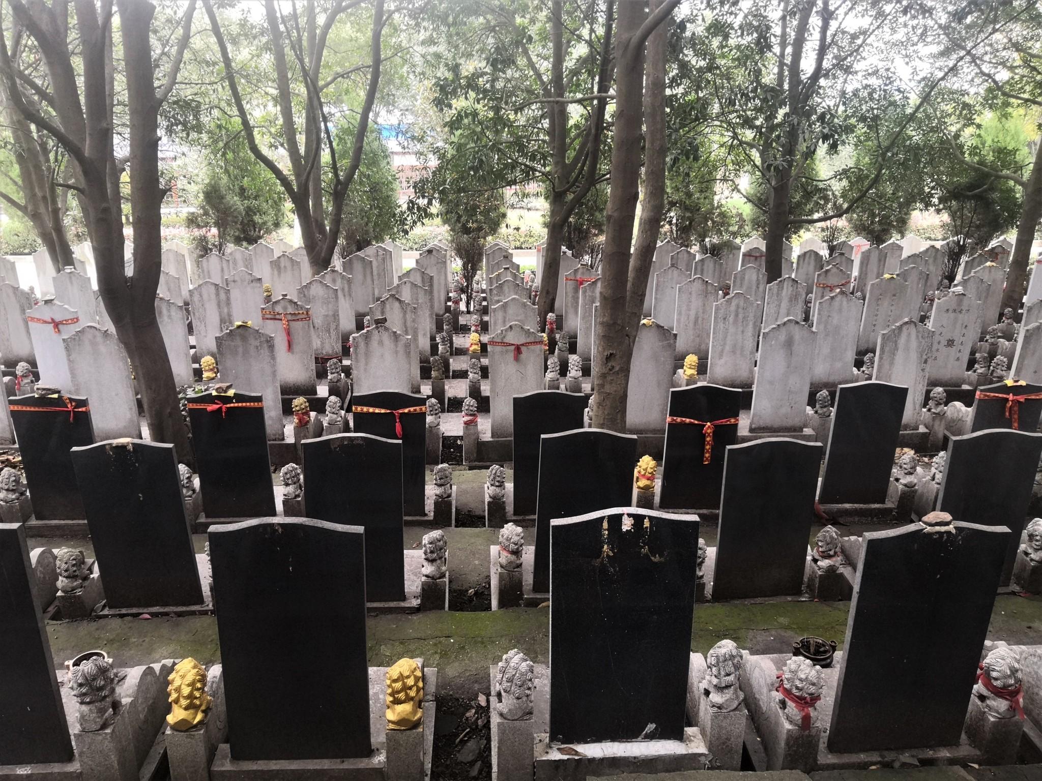 Cementerio de Biandanshan, en Wuhan (China).