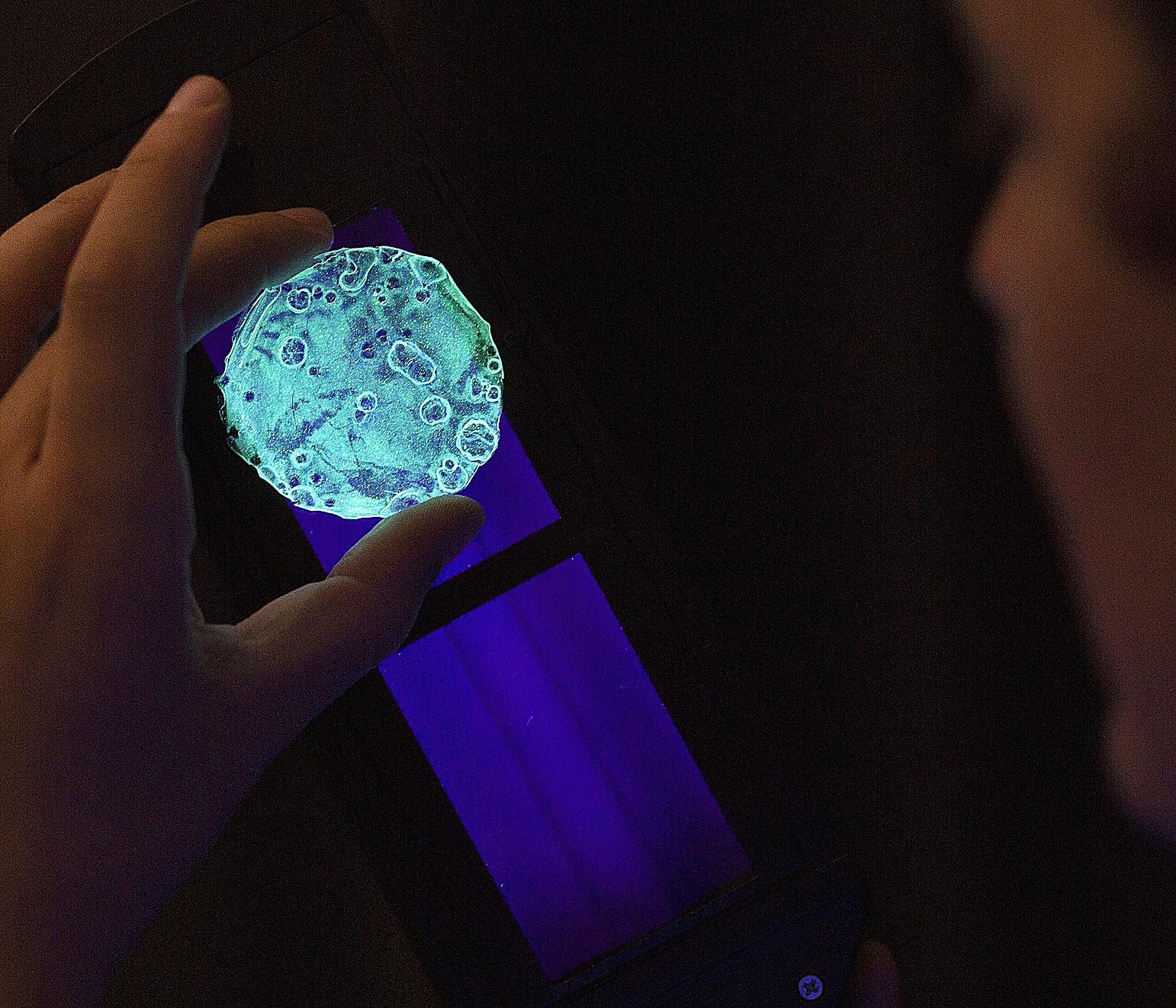 Éxito.  En la imagen, un investigador del instituto Imdea Materiales muestra un caso de éxito en innovación: un polímero con el que se construirán ventanas que generen electricidad.