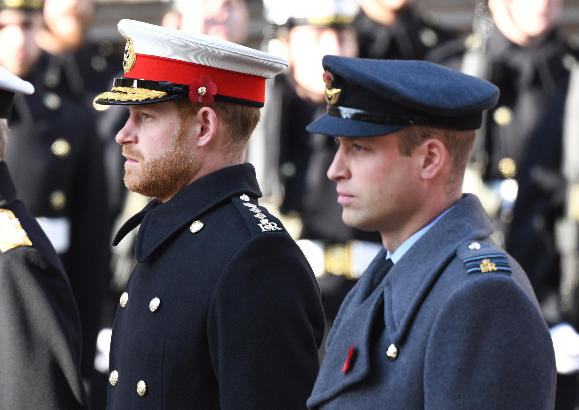 Los príncipes Harry y Guillermo, en noviembre de 2019.