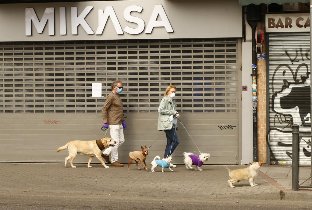 Dos personas pasean a sus perros.
