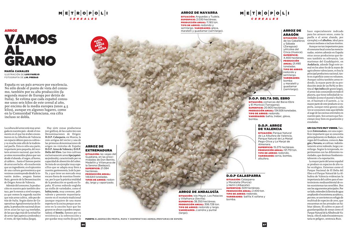 Informe sobre el arroz