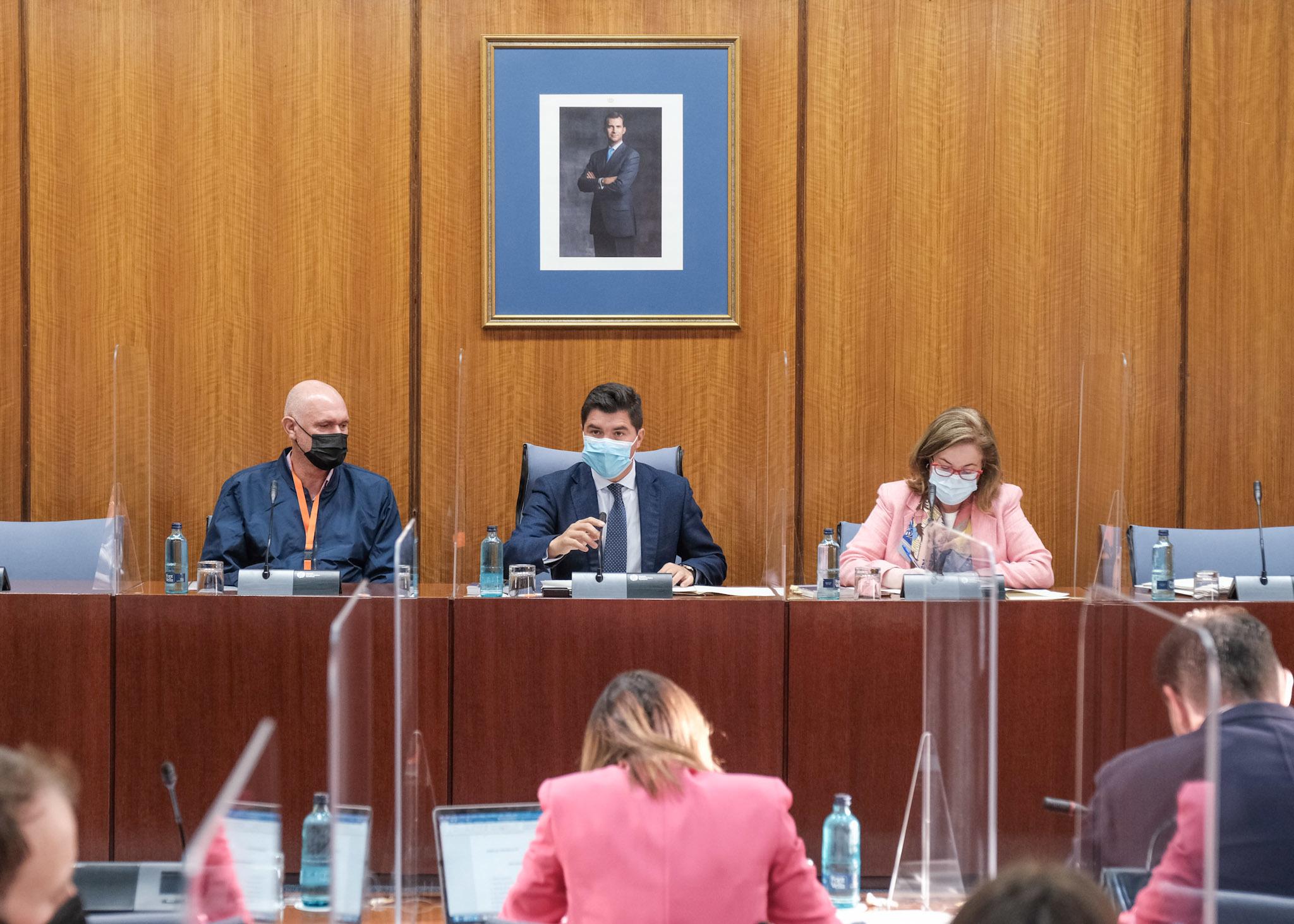 El ex chófer de Villén, Juan Carlos Carrillo, a la izquierda, este viernes en la comisión parlamentaria de la Faffe.