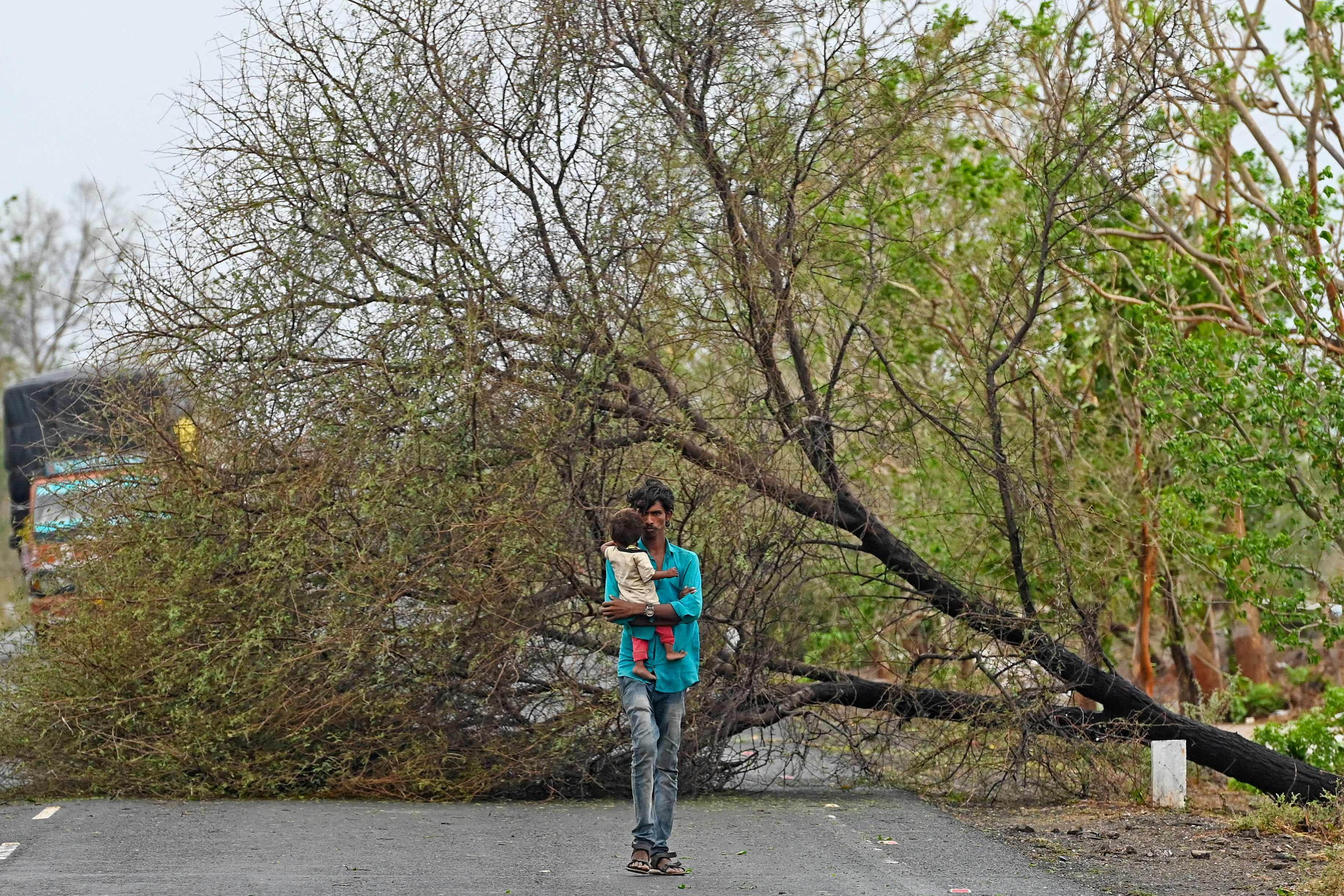 Un hombre camina por una carretera con árboles caídos por el ciclón.