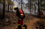 Incendio forestal en Tenerife